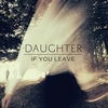 album cover If You Leave (DAUGHTER)