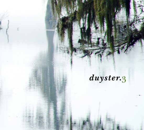 afbeelding duyster.3